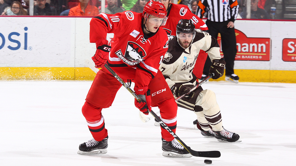 AHL: Checkers Recall Steven Lorentz From Florida