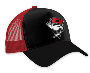 Charlotte Checkers group hat giveaway