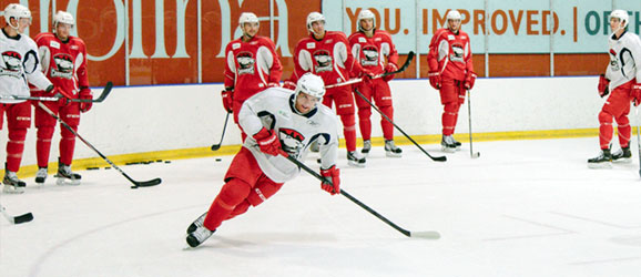 Charlotte Checkers 2013-14 Season Preview