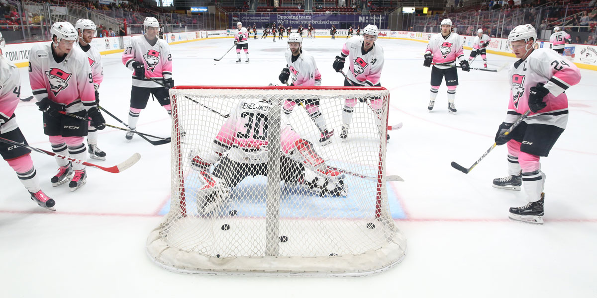 Charlotte Checkers Pink in the Rink